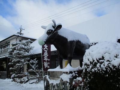 稲武にしては大雪です。_c0194003_11333811.jpg
