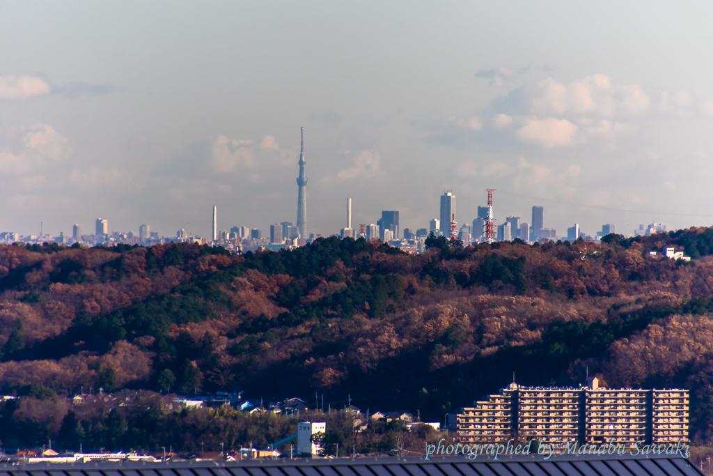 あさひ山展望公園_b0010915_19183273.jpg