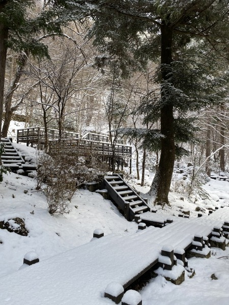 ❆付知峡の雪景色❆_e0020051_13513976.jpg