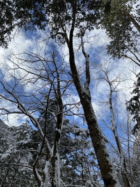 ❆付知峡の雪景色❆_e0020051_13521854.jpg