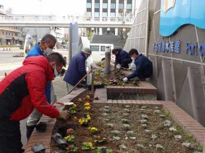 ガーデンふ頭総合案内所前花壇の植替えR2.12.14_d0338682_09243147.jpg