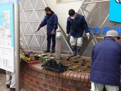 ガーデンふ頭総合案内所前花壇の植替えR2.12.14_d0338682_09303298.jpg