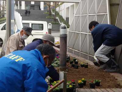 ガーデンふ頭総合案内所前花壇の植替えR2.12.14_d0338682_09304477.jpg