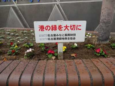 ガーデンふ頭総合案内所前花壇の植替えR2.12.14_d0338682_09313900.jpg