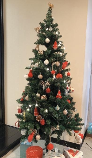 クリスマスイブはNHKで癒されましょう♡_e0319202_11323280.jpeg