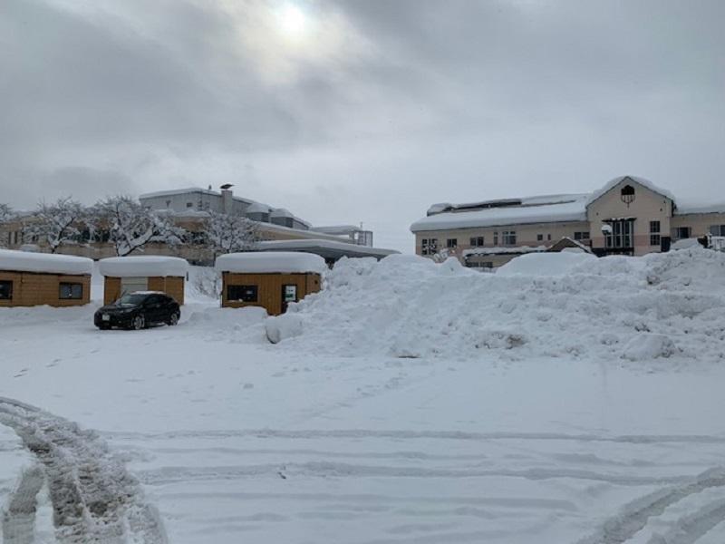 積雪100cm_e0341538_11511938.jpg