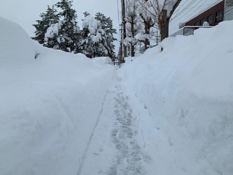 積雪100cm_e0341538_12560064.jpg