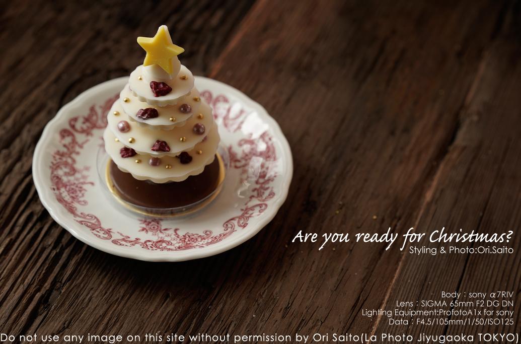 クリスマスツリー『サパン』を SIGMA 65mm F2 DG DN + ProfotoA1x  + sony α7R IV ノートリ 実写_f0212049_01301063.jpg