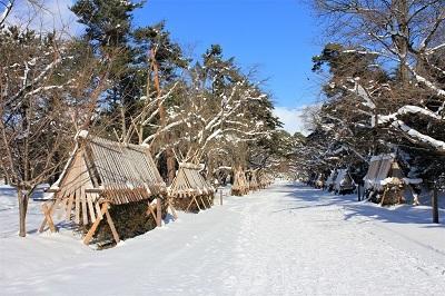 弘前公園冬さんぽ_2020.12.18撮影_d0131668_13023900.jpg