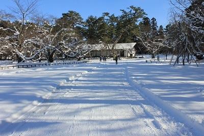 弘前公園冬さんぽ_2020.12.18撮影_d0131668_13060338.jpg