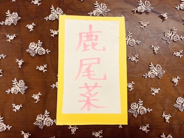 12月19日 ぱぱがんばれ_e0318040_16393610.jpg
