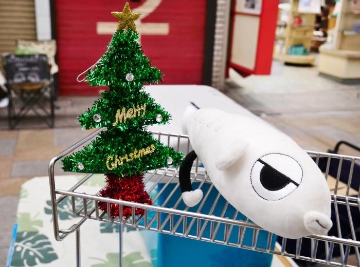 12月のポぽロハスマーケット  2020-12-20 00:00_b0093754_16092158.jpg