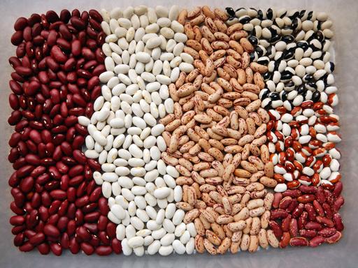 豆の収穫 2020年_d0366590_10315798.jpg