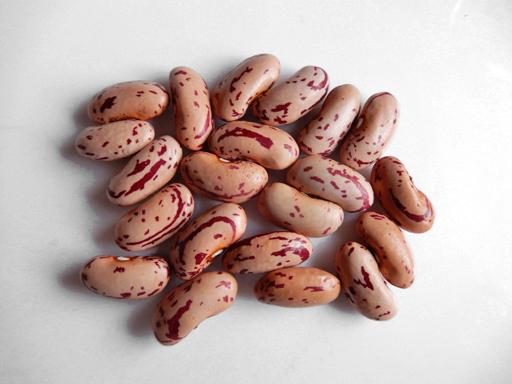 豆の収穫 2020年_d0366590_10484320.jpg
