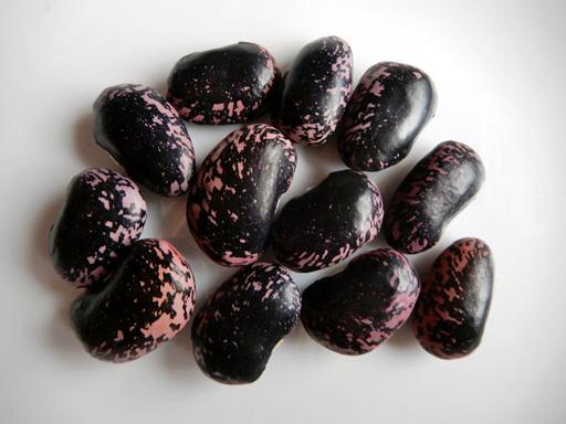 豆の収穫 2020年_d0366590_11024518.jpg