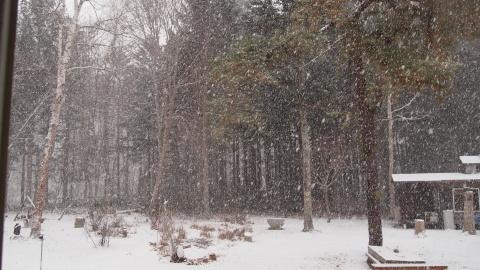 師走は豪雪と低温_b0343293_16315440.jpg