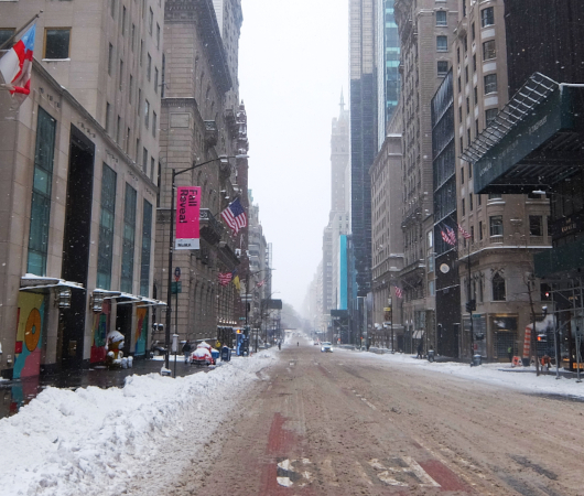 大雪のニューヨークの五番街(動画)_b0007805_06280586.jpg
