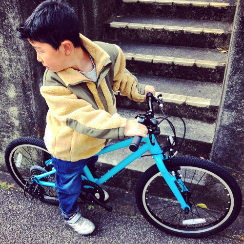 RITEWAY ライトウェイ 子供自転車 「ZIT ジット」キッズバイク おしゃれ子供車 ライトウェイジット_b0212032_17550634.jpeg