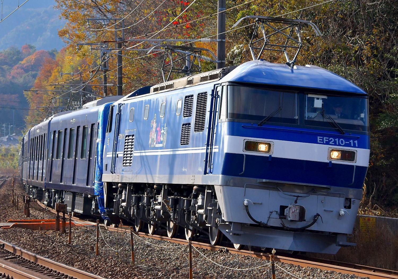相模鉄道20107F甲種輸送_a0251146_21235856.jpg