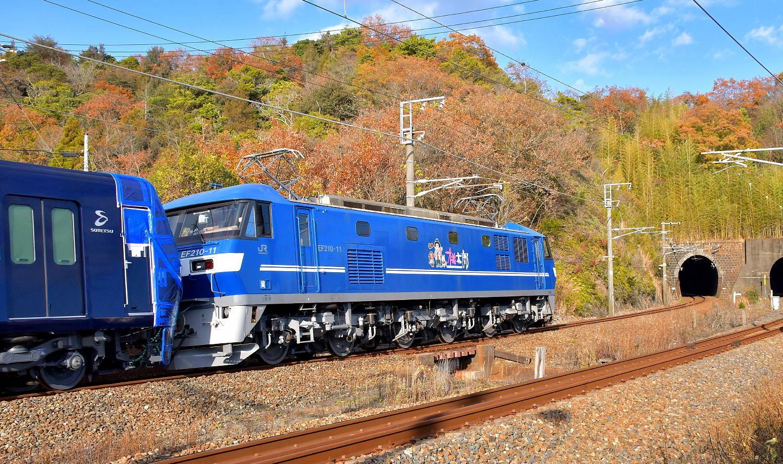 相模鉄道20107F甲種輸送_a0251146_21241448.jpg