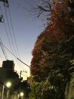 ☆Great Conjunction * 木星と土星の会合 ☆_d0030693_20125935.jpg
