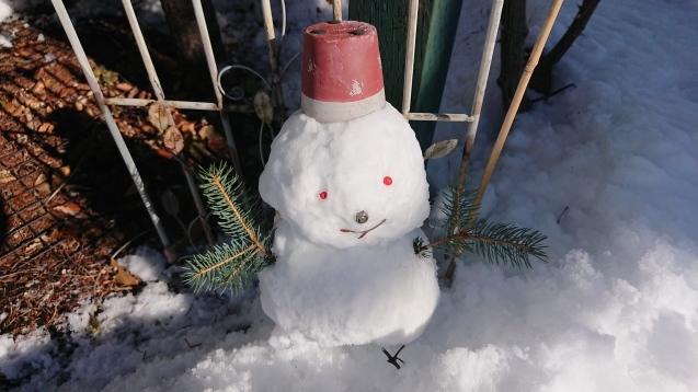 雪だるま作ってみました♪_c0320302_14173663.jpg