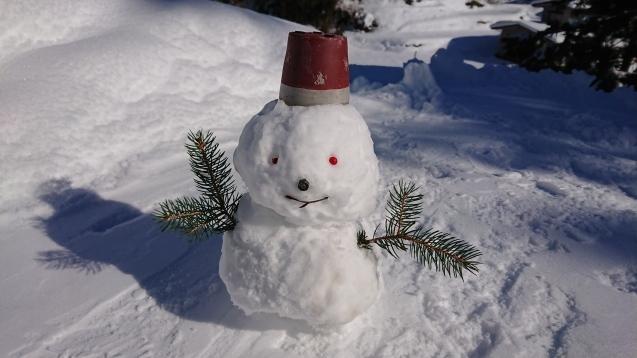 雪だるま作ってみました♪_c0320302_14174482.jpg