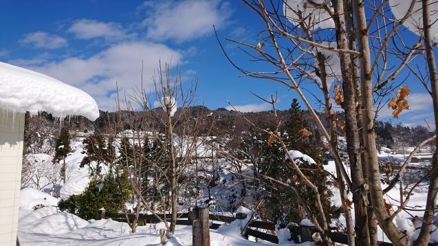 雪だるま作ってみました♪_c0320302_14180337.jpg