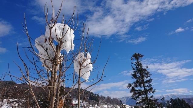 雪だるま作ってみました♪_c0320302_14184701.jpg