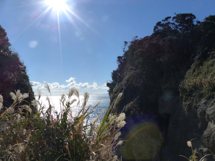 江の島散策2020 12月Part2_f0296312_11361942.jpg