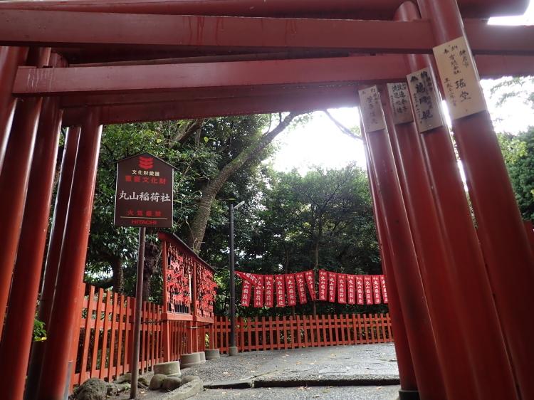 【FOX】キツネの江戸と東京、不思議と信心と消滅とさわり【FOX】_b0116271_22024168.jpg