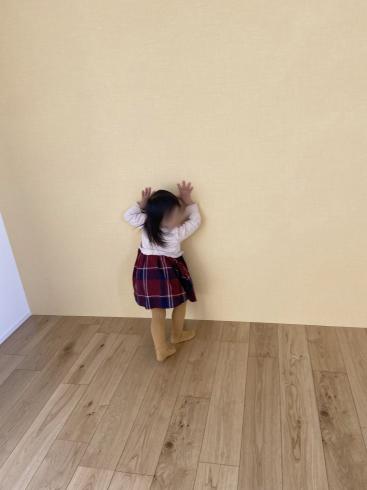 桜島を望む家、竣工検査を終えました!!_d0174072_20315290.jpg