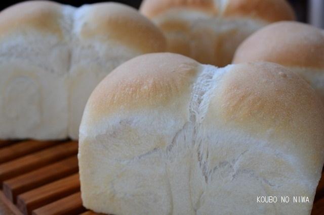 自家製酵母食パン&紅茶オレンジチョコ_f0329586_15253020.jpg