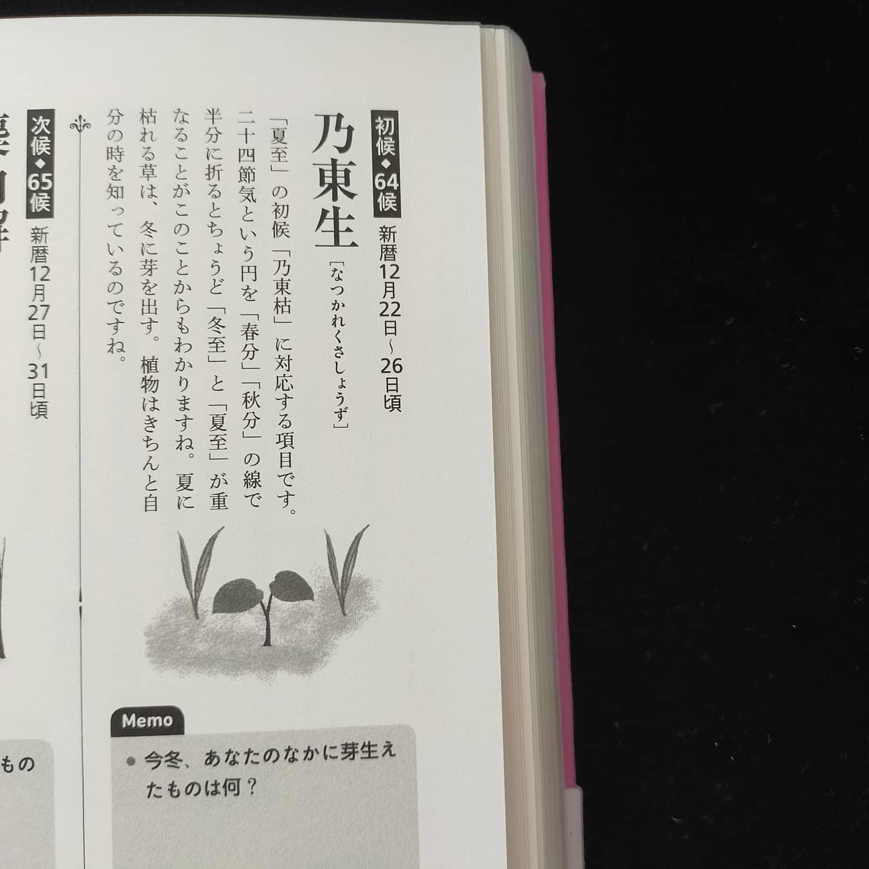 201223 七十二候「乃東生 (なつかれくさしょうず)」_f0164842_20152190.jpg