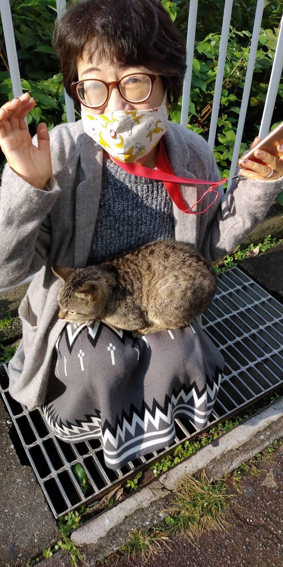 猫三昧(笑)_e0251855_20211021.jpg