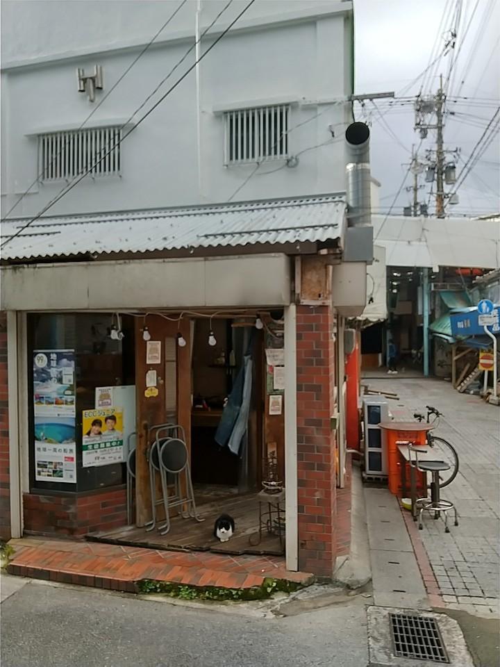 猫三昧(笑)_e0251855_20211103.jpg