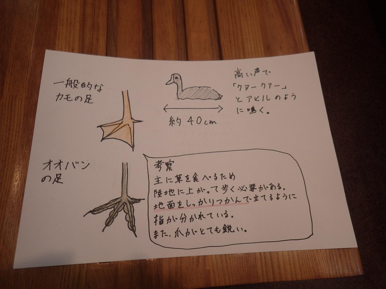 ボーイスカウト日本連盟の子どもたちの対応を行いました_e0046474_21061010.jpg