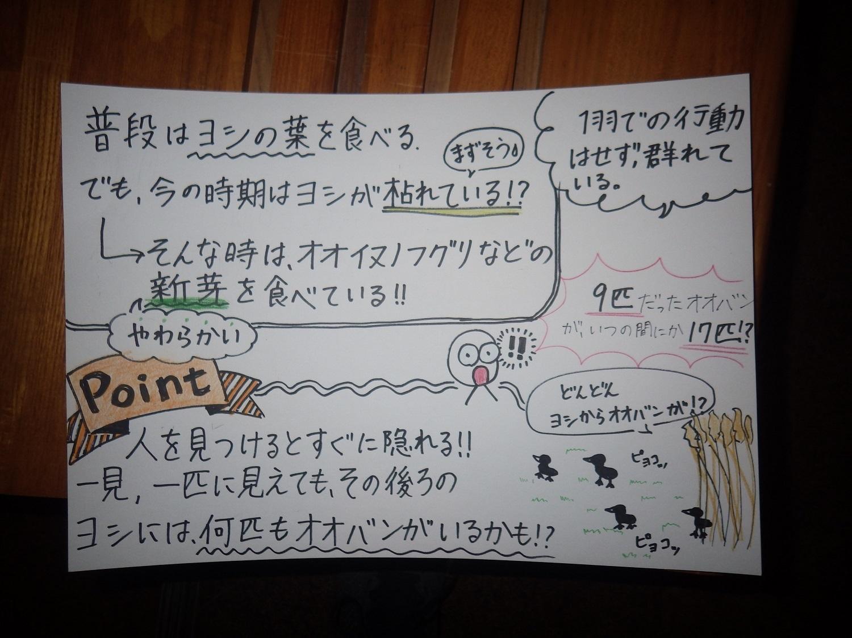 ボーイスカウト日本連盟の子どもたちの対応を行いました_e0046474_21061143.jpg