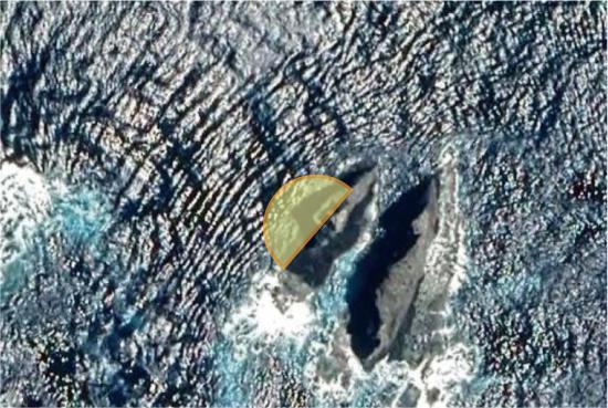 海底清掃_d0357480_16552852.jpg