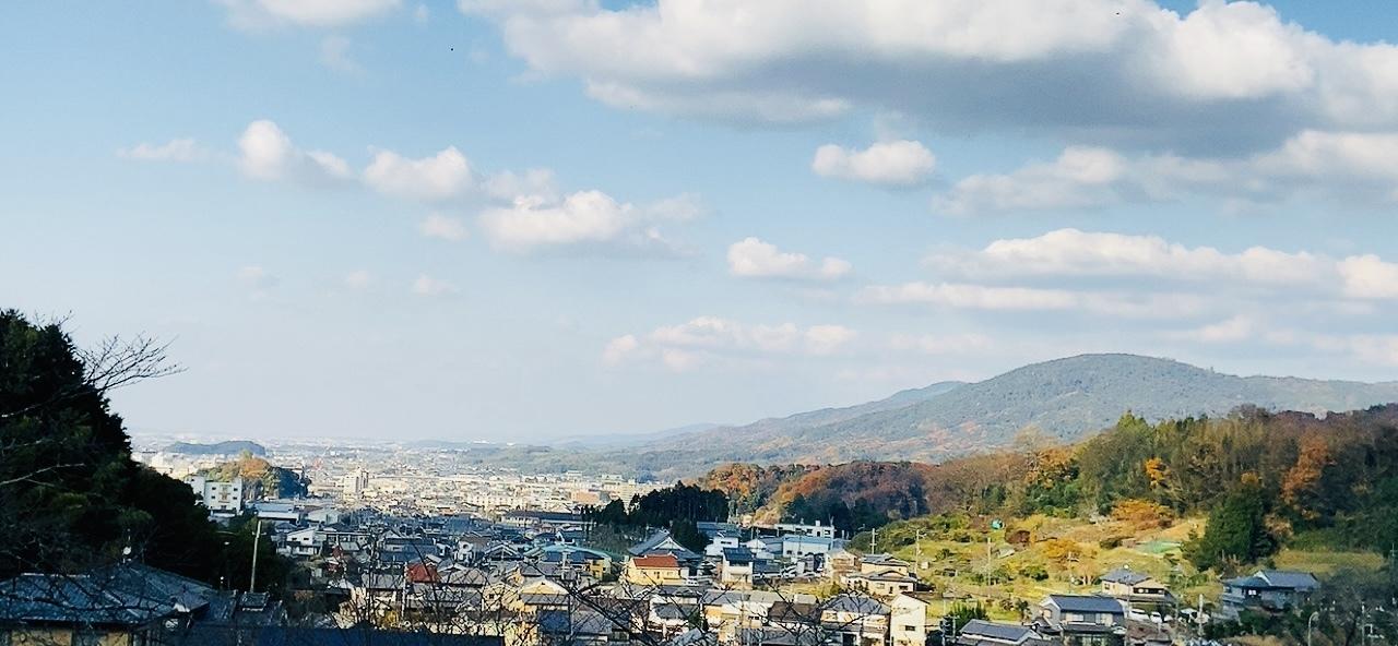 三輪山の女神 -聖林寺の十一面観音ー_a0020162_21204416.jpeg