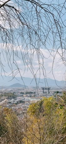三輪山の女神 -聖林寺の十一面観音ー_a0020162_21230941.jpeg
