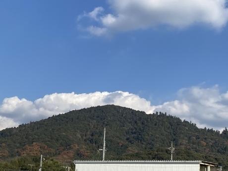 三輪山の女神 -聖林寺の十一面観音ー_a0020162_21250711.jpeg