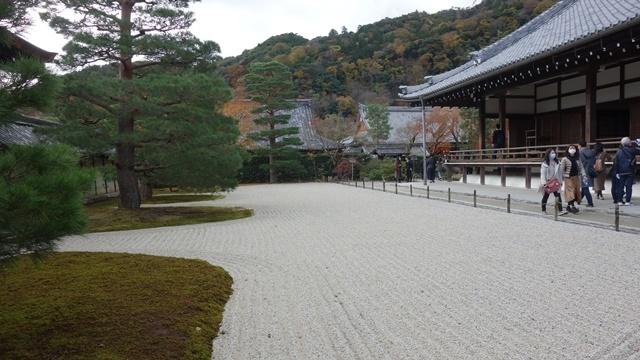 2020年秋の京都へ⑦天龍寺庭園をお散歩_f0146587_22092424.jpg