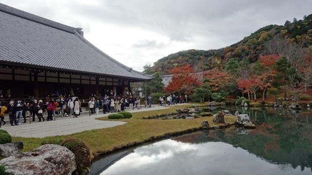 2020年秋の京都へ⑦天龍寺庭園をお散歩_f0146587_22113471.jpg