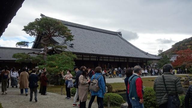 2020年秋の京都へ⑦天龍寺庭園をお散歩_f0146587_22402431.jpg
