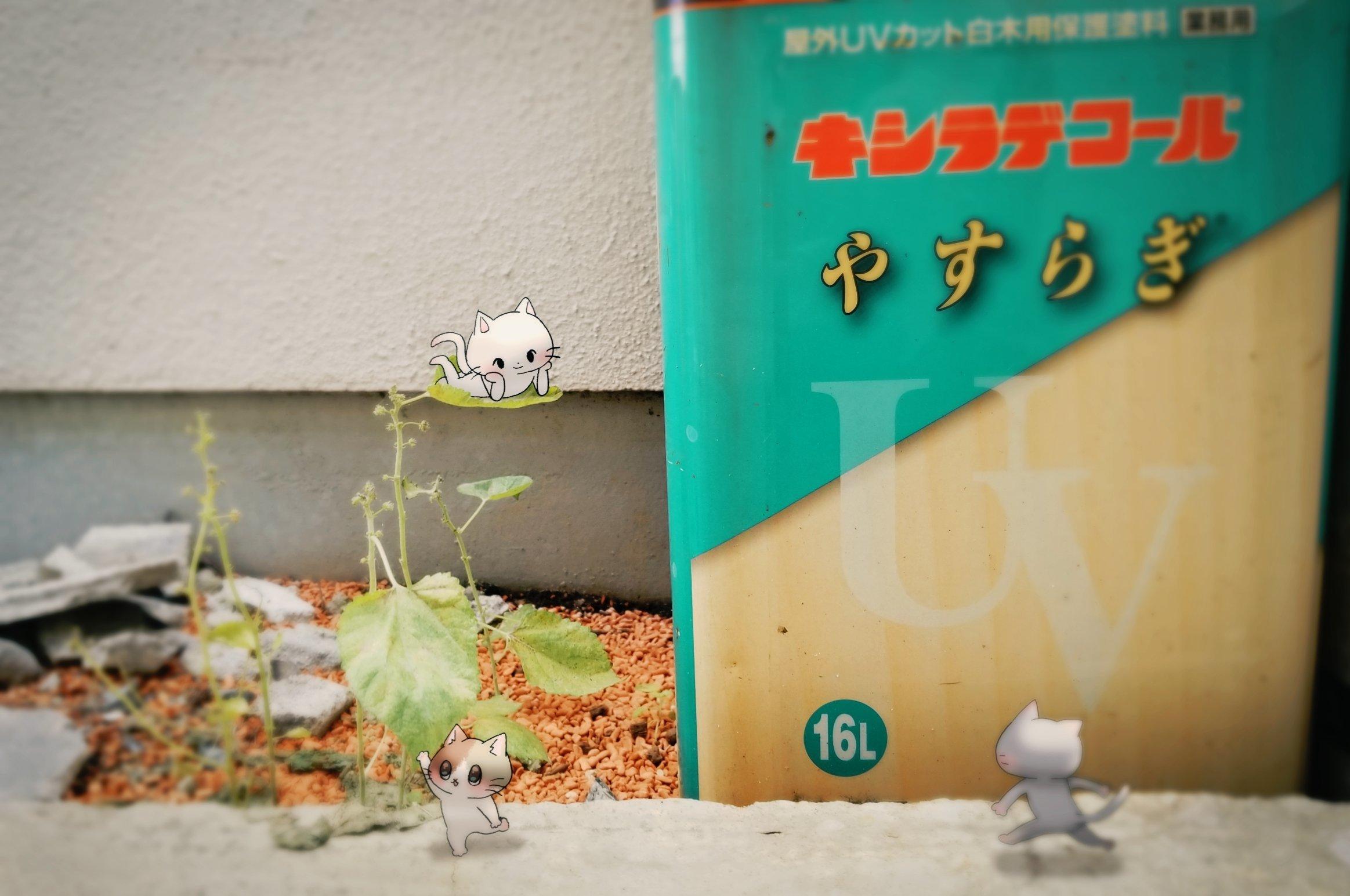 Twitter写真絵日記まとめ⑧_a0201203_17113643.jpg