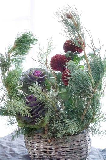 さぁお正月花へシフト!&クリスマスのちっちゃいお祝い_b0151911_23161563.jpg