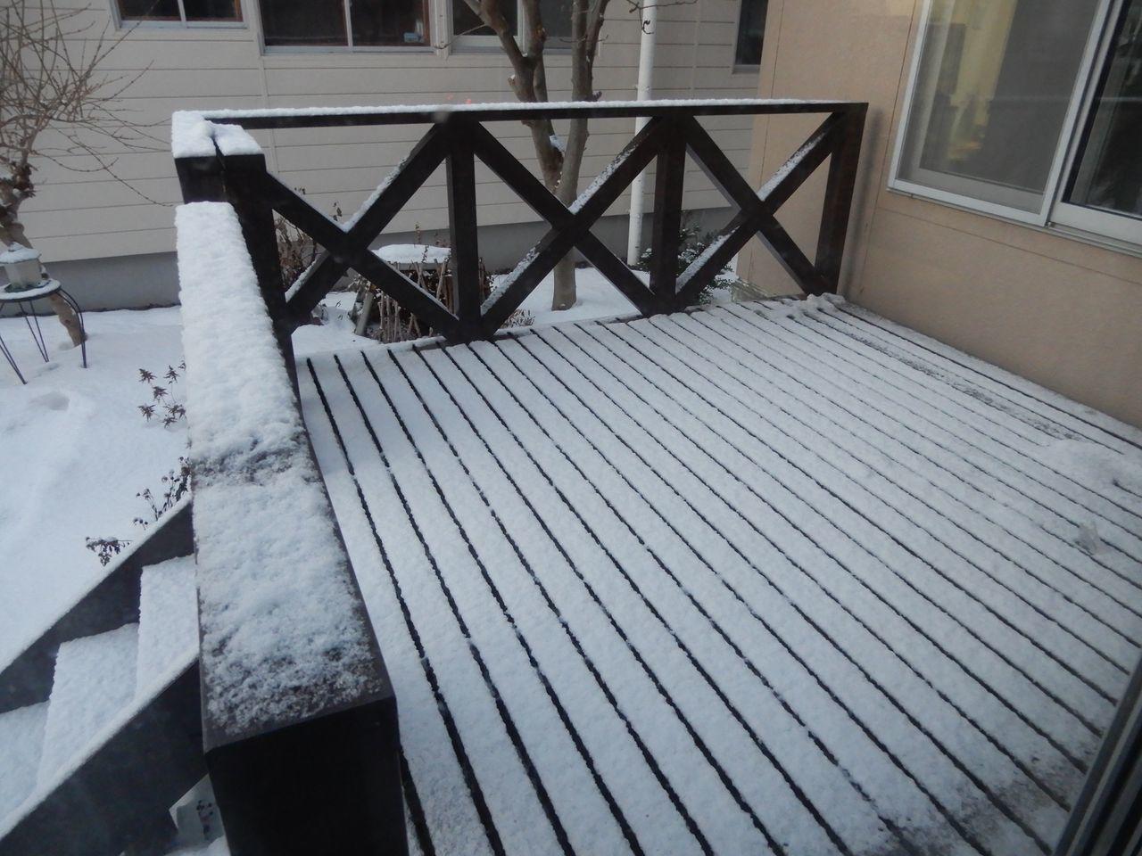 暖気はおしまい_c0025115_21240579.jpg