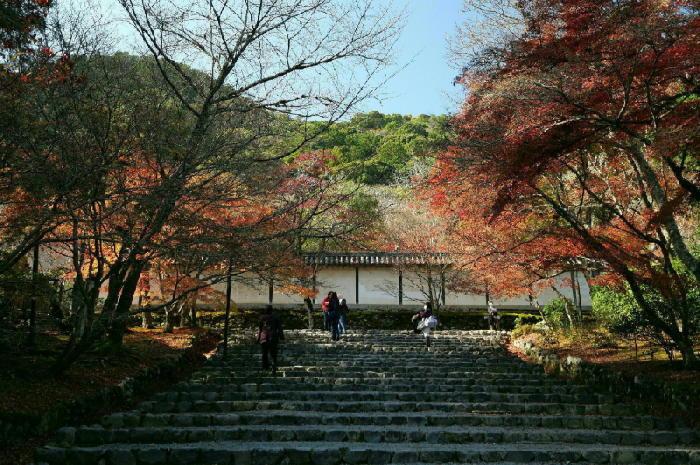 京都 二尊院_a0120774_13493914.jpg