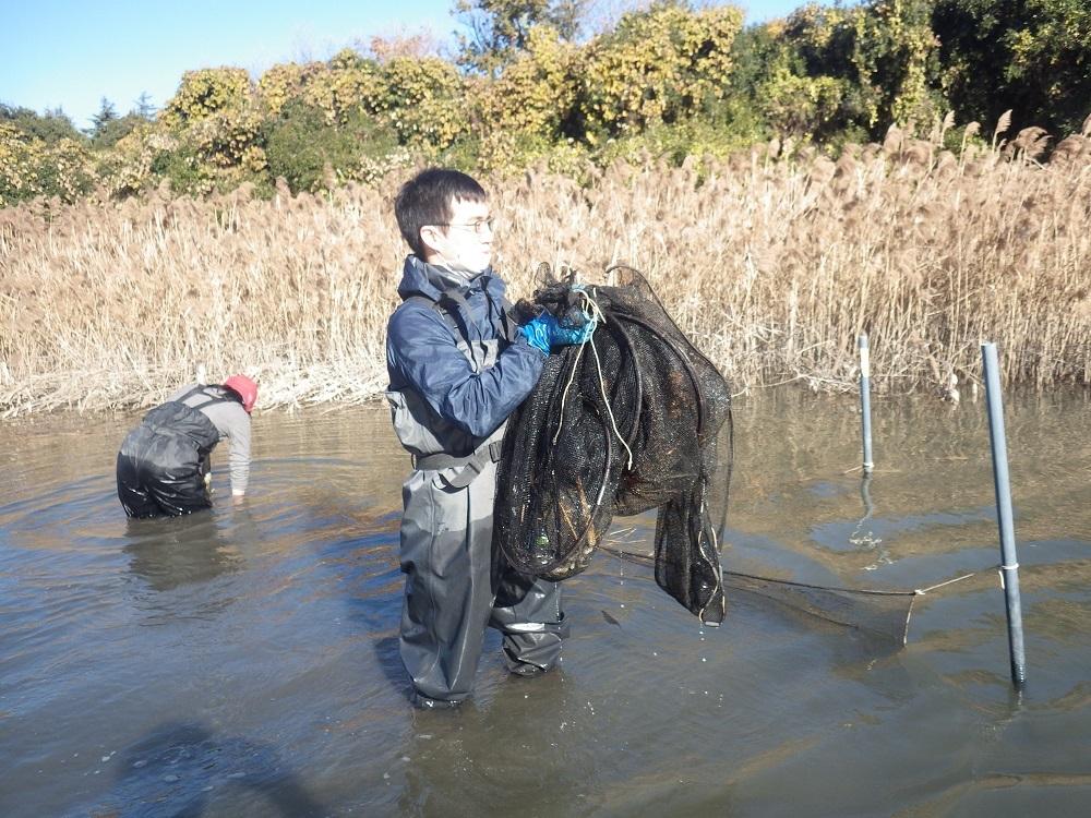 冬の魚たち・・・水生生物調査の結果(12月)_e0046474_18441567.jpg